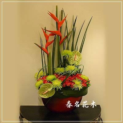 E003精緻盆花開幕喬遷會場佈置室內景觀佈置花禮台中花店