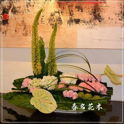 E004精緻盆花開幕喬遷會場佈置室內景觀佈置花禮台中花店