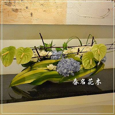 E006精緻盆花開幕喬遷會場佈置室內景觀佈置花禮台中花店