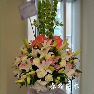 E022精緻盆花開幕喬遷會場佈置室內景觀佈置花禮台中花店