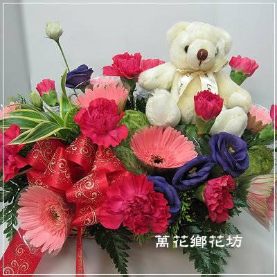 D051感恩時刻母親節康乃馨盆花-母親節花禮-台南市花店