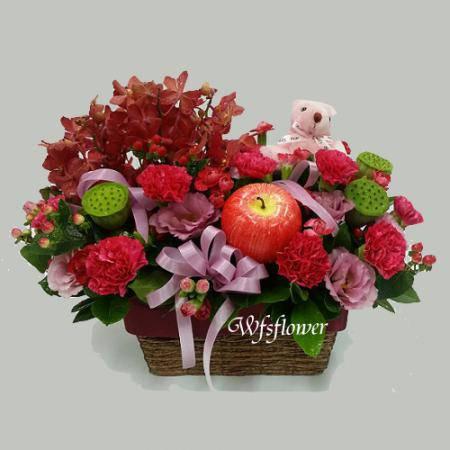 D052馨情母親節康乃馨盆花母親節花禮-台南市花店