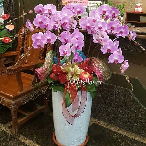 H043蘭花組合盆景廟會祝賀開幕落成賀禮台南市花店