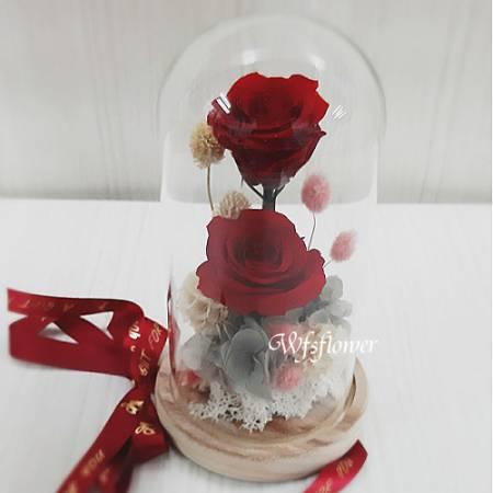 G013進口永生紅玫瑰情人節花禮(切貨)