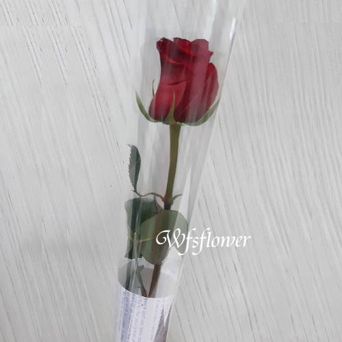 K002單支玫瑰花束生日花束團體贈品