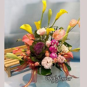 D030溫柔花樣祝福盆花新春花禮台南市花店