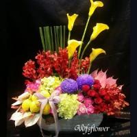 D072喜悅精緻盆花婚禮祝福台南市花店