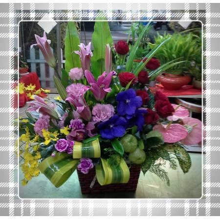 [E067]祝賀藝術盆花