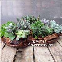 台北士林花店沐恩花藝多肉植物盆栽辦公桌上盆栽