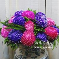 M055祝賀盆花喜慶盆花新春花禮會場佈置