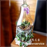 D015特殊造型蘭花組合盆栽