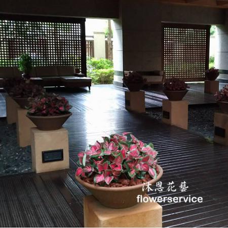R010人造花盆栽玄關或大廳佈置店面擺飾