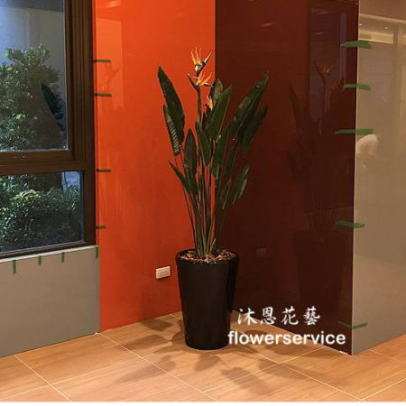 R015人造花盆栽玄關或大廳佈置店面擺飾