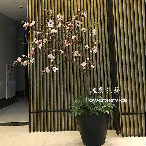R017店面擺飾盆栽