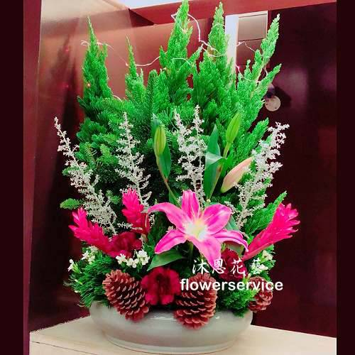 M070聖誕節花禮聖誕節盆花
