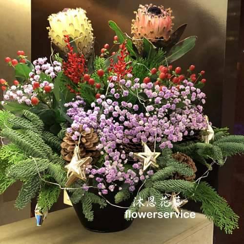 M073祝賀盆花喜慶盆花聖誕盆花