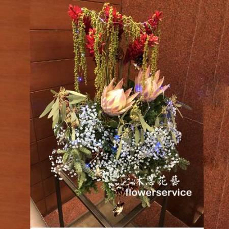 M075祝賀盆花喜慶盆花聖誕盆花