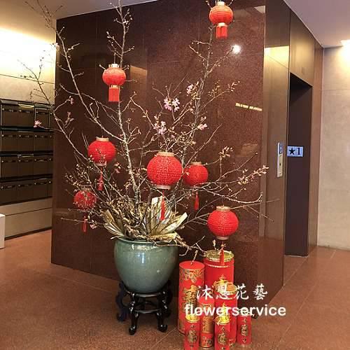 M077新春盆花精緻盆花祝賀盆花新春布置
