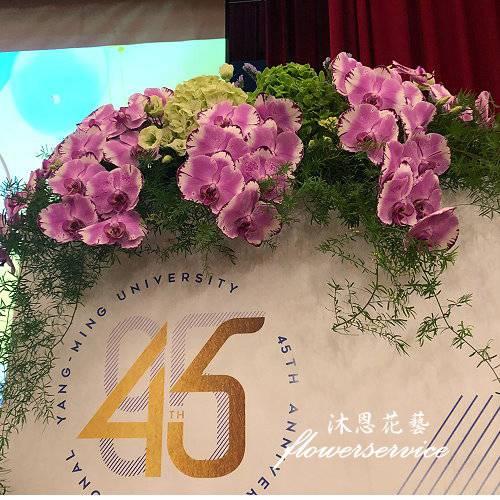 M086祝賀盆花喜慶盆花講台花會場佈置
