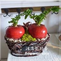 J014新春桌上盆栽