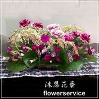 M020愛心滿滿母親節盆花