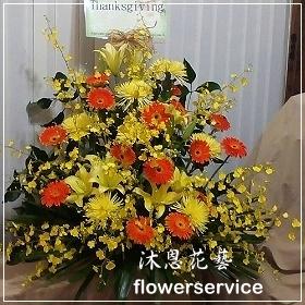 M031台北花店沐恩花藝祝賀盆花喜慶盆花開幕喬遷盆花
