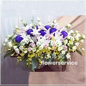 M038台北花店沐恩花藝祝賀盆花喜慶盆花開幕喬遷盆花