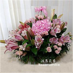 M052祝賀盆花喜慶盆花
