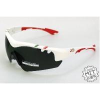 AD國旗配色偏光鏡片TR90塑膠鈦運動防風太陽眼鏡~QuasarF系列台灣外銷精品
