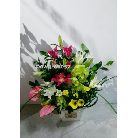D006精緻盆花