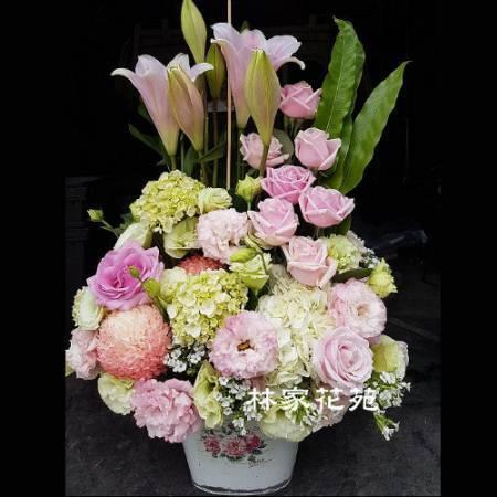 C010祝賀喜慶盆花會場佈置開幕榮陞賀禮桌上盆花