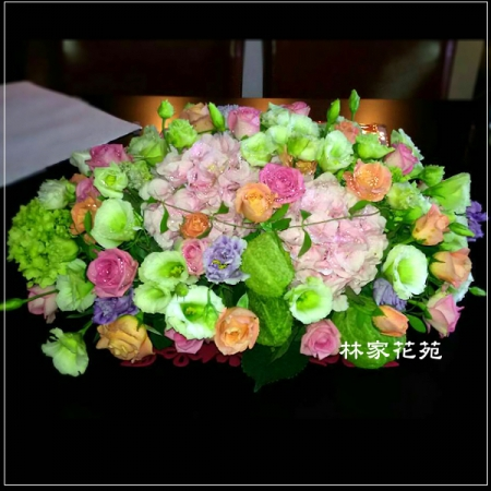 C003祝賀喜慶盆花會場佈置開幕榮陞賀禮桌上盆花