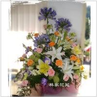 C006精緻盆花-花舞春風百合玫瑰