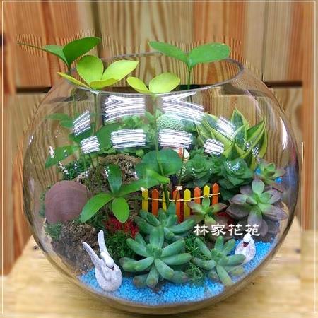 E012玻璃球~開運綠色組合造型盆