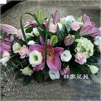 C008祝賀喜慶盆花會場佈置開幕榮陞賀禮桌上盆花
