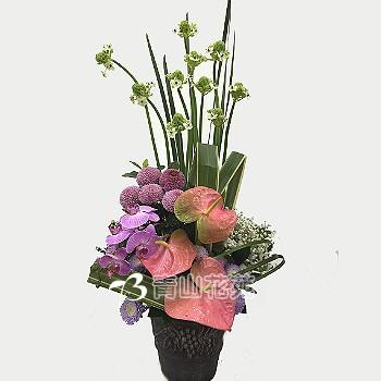C006祝賀喜慶盆花會場佈置開幕榮陞賀禮桌上盆花