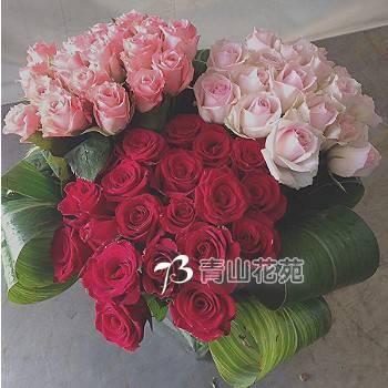 C011祝賀喜慶盆花會場佈置開幕榮陞賀禮桌上盆花