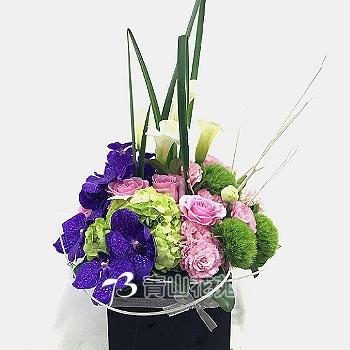 C017精緻盆花祝賀花禮開幕喬遷時尚盆花