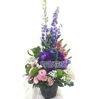 C018精緻盆花祝賀花禮開幕喬遷時尚盆花