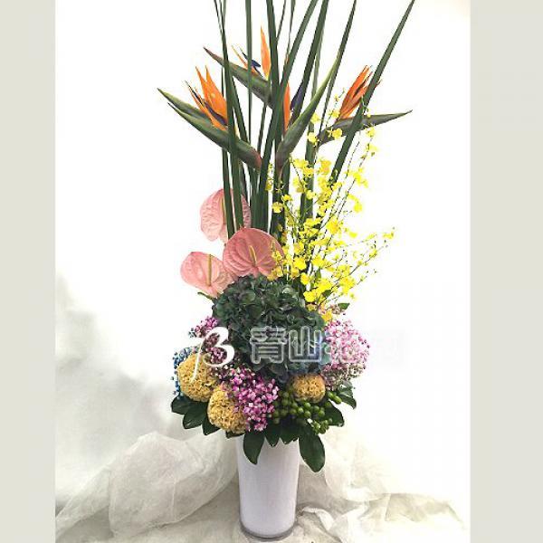 C027精緻盆花祝賀花禮開幕喬遷時尚盆花