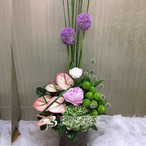 C030精緻盆花祝賀花禮開幕喬遷時尚盆花