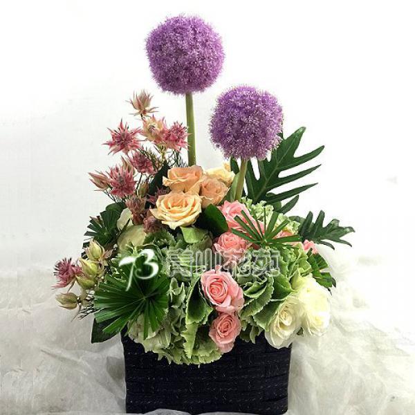 C031精緻盆花祝賀花禮開幕喬遷時尚盆花