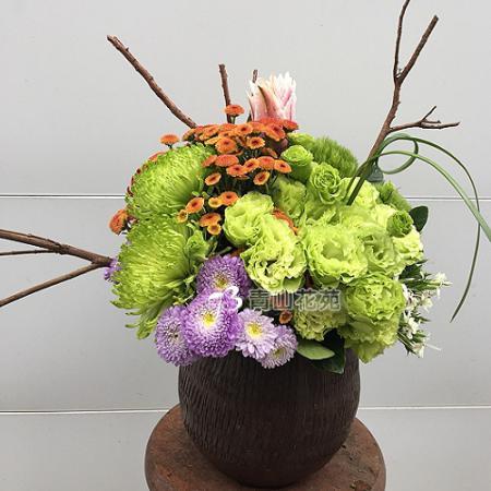 C032祝賀喜慶盆花會場佈置開幕榮陞賀禮桌上盆花
