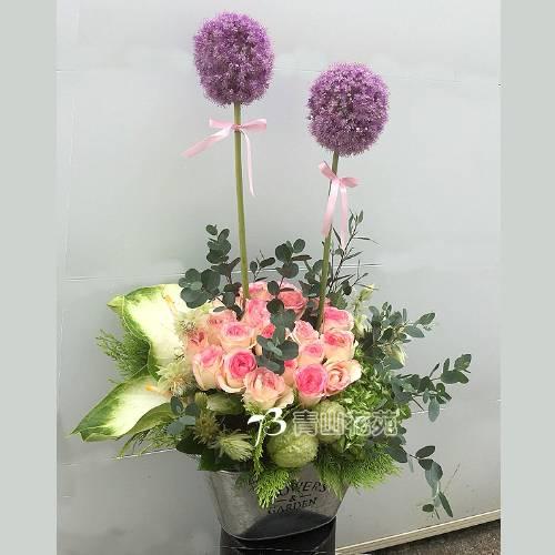 C036精緻盆花會場佈置盆花店面擺設