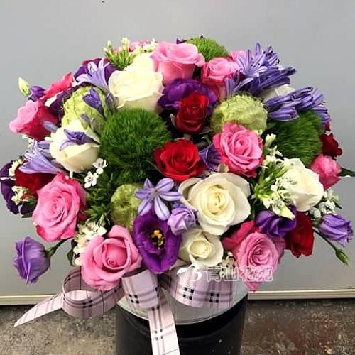 C037精緻盆花店面擺設會場佈置盆花