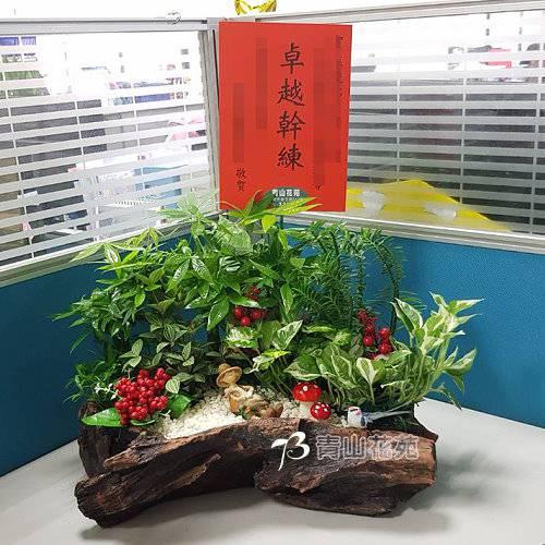 F046喬遷之喜榮陞誌喜盆栽喜慶盆栽