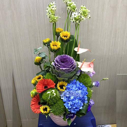 C040時尚喜慶盆花會場佈置開幕榮陞賀禮桌上盆花
