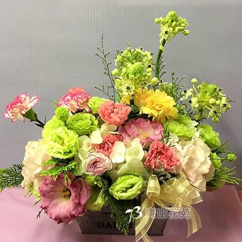 C041時尚喜慶盆花會場佈置開幕榮陞賀禮桌上盆花