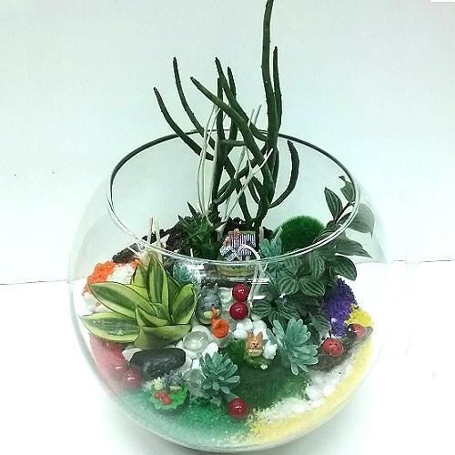 T065觀葉玻璃球組合盆栽開幕喬遷之喜榮陞誌喜盆栽