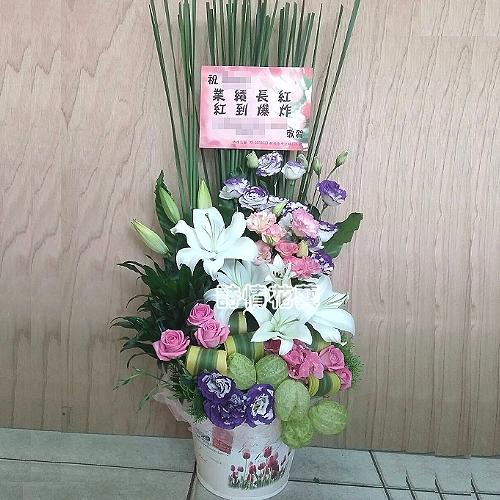 A041精緻盆花會場佈置盆花開幕喬遷時尚盆花